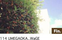 WaGE 梅ヶ丘